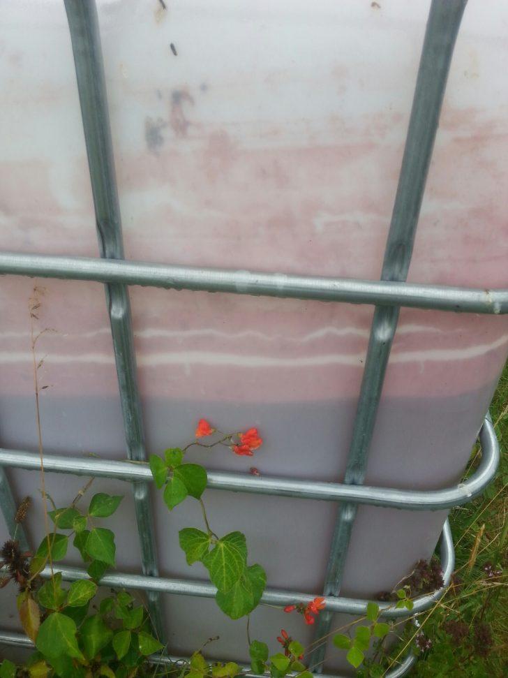 Medium Size of Wassertank Garten Eckig Unterirdisch Flach 2000l Oberirdisch Obi 1000l 10000l Toom Gebraucht Rote Ablagerungen Im Was Bzw Wer Ist Das Lärmschutzwand Kosten Garten Wassertank Garten