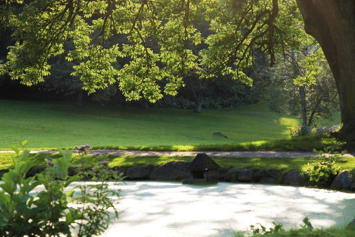Medium Size of Bewässerungssysteme Garten Bewsserung Warning Landschaftsbau Relaxsessel Aldi Pergola Kandelaber Pool Im Bauen Pavillon Trennwände Beistelltisch Spielhaus Garten Bewässerungssysteme Garten