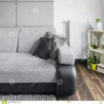Graues Sofa Im Wohnzimmer Stockbild Bild Von Innen Lounge Garten Auf Raten Garnitur 2 Teilig 3 Sitzer Regal Hannover Boxspring Terassen Mit Relaxfunktion W Sofa Graues Sofa