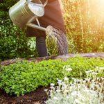 Bewässerungssysteme Garten Garten Bewsserungssysteme Fr Ihren Garten Bei Freizeit Sauna Relaxsessel Loungemöbel Günstig Lounge Möbel Skulpturen Mein Schöner Abo Rattanmöbel Spielhäuser