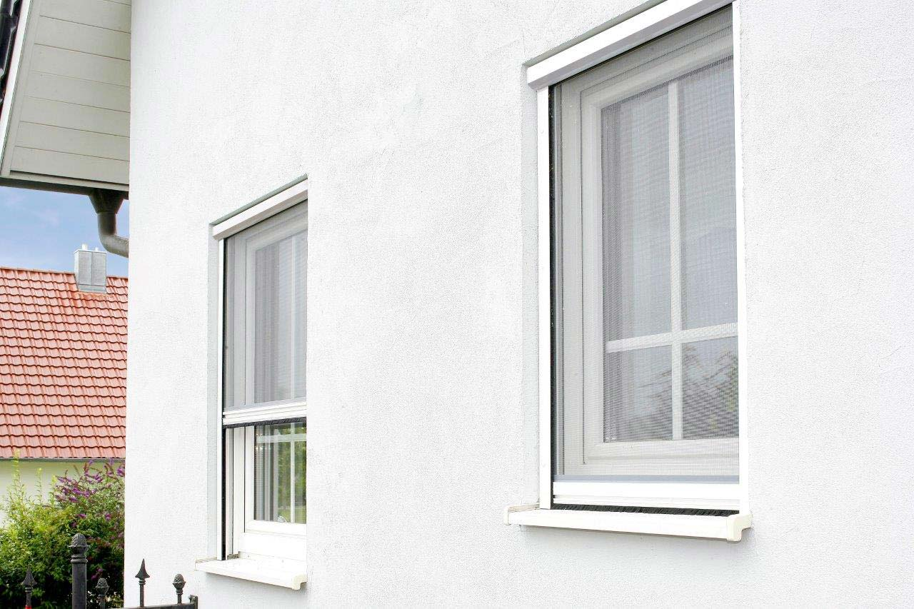 Full Size of Insektenschutz Von Mini Bis Xxl Individuell Nach Ma Zum Fenster Einbruchschutz Schüko Holz Alu Preise Einbauen Insektenschutzrollo Nachrüsten Standardmaße Fenster Insektenschutz Fenster
