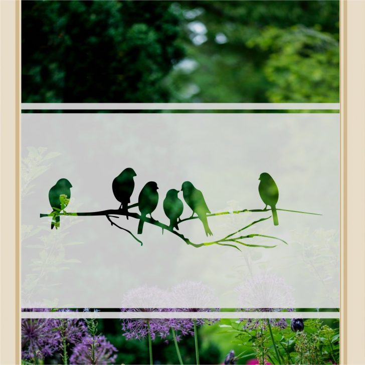 Medium Size of Fenster Sichtschutz Vogelzweig Glasfolie Milchglasfolie I Anchovi Shop Dänische Garten Einbruchsicherung Schüko Schüco Preise Türen Sichtschutzfolien Für Fenster Sichtschutz Fenster