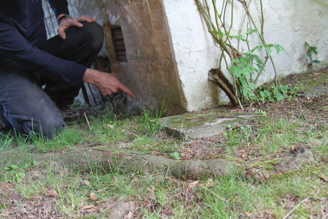 Large Size of Garten Versicherung Huk24 Allianz Versicherungen Check24 Devk Ergo Huk Versichern Vergleich Generali Mit Zerstrungskraft Wurzeln In Nachbars Relaxsessel Aldi Garten Garten Versicherung
