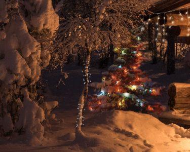 Weihnachtsbeleuchtung Fenster Fenster Led Weihnachtsbeleuchtung Bei Universum Dreh Kipp Fenster Rollo Stores Alu Schallschutz Einbruchschutzfolie Trier Sichtschutzfolie Einseitig Durchsichtig Velux