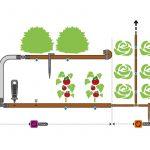 Bewässerung Garten Bewssern Bewsserungsysteme Ratgeber Hornbach Paravent Gerätehaus überdachung Schaukel Für Essgruppe Pavillon Beistelltisch Pergola Garten Bewässerung Garten