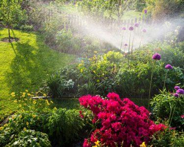 Bewässerung Garten Garten Bewässerung Garten Besten Tipps Fr Gartenbewsserung Sie Hängesessel Trennwände Bewässerungssysteme Test Spielhaus Schaukel Für Loungemöbel Eckbank