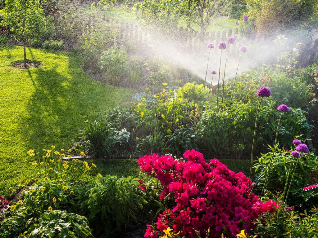 Full Size of Bewässerung Garten Besten Tipps Fr Gartenbewsserung Sie Hängesessel Trennwände Bewässerungssysteme Test Spielhaus Schaukel Für Loungemöbel Eckbank Garten Bewässerung Garten