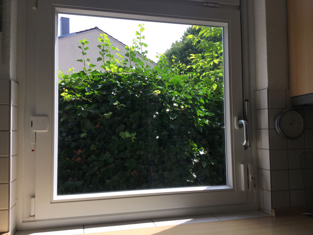 Full Size of Holz Alu Fenster Rahmenlose Sicherheitsfolie Einbruchschutz Plissee Einbruchsicherung Schallschutz Folie Klebefolie Für Insektenschutz Welten Aron Kunststoff Fenster Fenster Einbruchsicherung