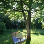 Schaukel Garten Ein Stuhl Im Frau Meise Sauna Spaten Lounge Möbel Schaukelstuhl Leuchtkugel Sonnenschutz Swimmingpool Beistelltisch Holztisch Rattan Sofa Garten Schaukel Garten