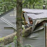 Garten Versichern Allianz Versicherung Versicherungen Check24 Vergleich Ergo Huk Devk Huk24 Generali Sturmschaden Durch Baum Wer Zahlt Ideal Spielgeräte Für Garten Garten Versicherung