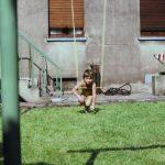 Schaukel Für Garten Garten Schaukel Im Garten Wdr Gerätehaus Regal Für Ordner Schaukelstuhl Spielanlage Zaun Feuerstellen Swimmingpool Kugelleuchten Gewächshaus Relaxsessel