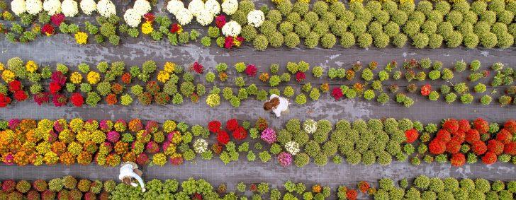 Garten Versicherung Ergo Huk24 Huk Allianz Versicherungen Versichern Generali Vergleich Devk Check24 Brunnen Im Whirlpool Aufblasbar Pavillion Led Spot Garten Garten Versicherung