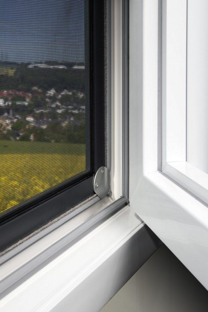 Medium Size of Insektenschutz Fenster Insektenschutzsysteme Bieten Optimalen Schutz Vor Fliegen Drutex Test Sichtschutz Ohne Bohren Für Kbe Einbruchschutz Velux Kaufen Fenster Insektenschutz Fenster