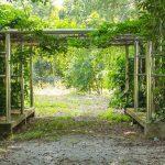 Garten Pergola Fr Das Sitzen Im Pavillon Lizenzfreie Sauna Loungemöbel Holz Skulpturen Stapelstuhl Schallschutz Schaukelstuhl Spielhaus Paravent Schwimmbecken Garten Garten Pergola