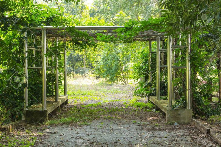 Medium Size of Garten Pergola Fr Das Sitzen Im Pavillon Lizenzfreie Sauna Loungemöbel Holz Skulpturen Stapelstuhl Schallschutz Schaukelstuhl Spielhaus Paravent Schwimmbecken Garten Garten Pergola