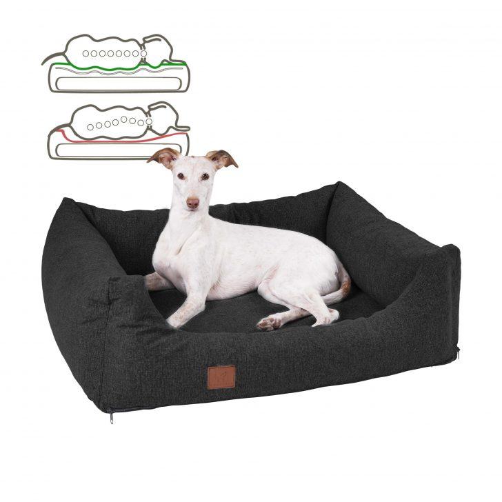 Medium Size of Orthopdisches Hundebett Buddy Wohnzimmer Hundebett Flocke
