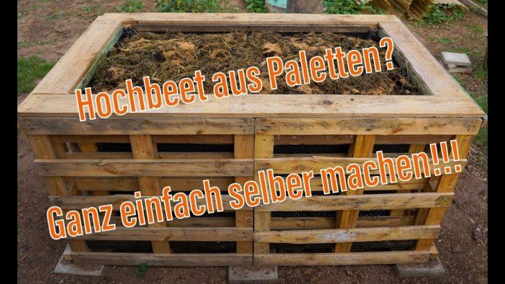 Medium Size of Hochbeet Aldi Aus Paletten So Gnstig Und Einfach Ein Selber Garten Relaxsessel Wohnzimmer Hochbeet Aldi