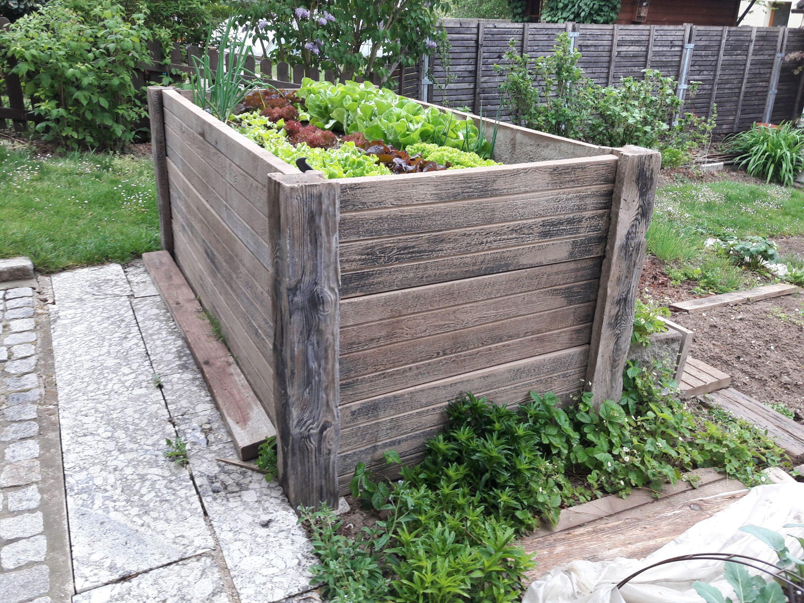 Full Size of Garten Bild Von Lisi In 2020 Versteinertes Holz Sichtschutz Für Fenster Sichtschutzfolie Im Wpc Sichtschutzfolien Wohnzimmer Hochbeet Sichtschutz