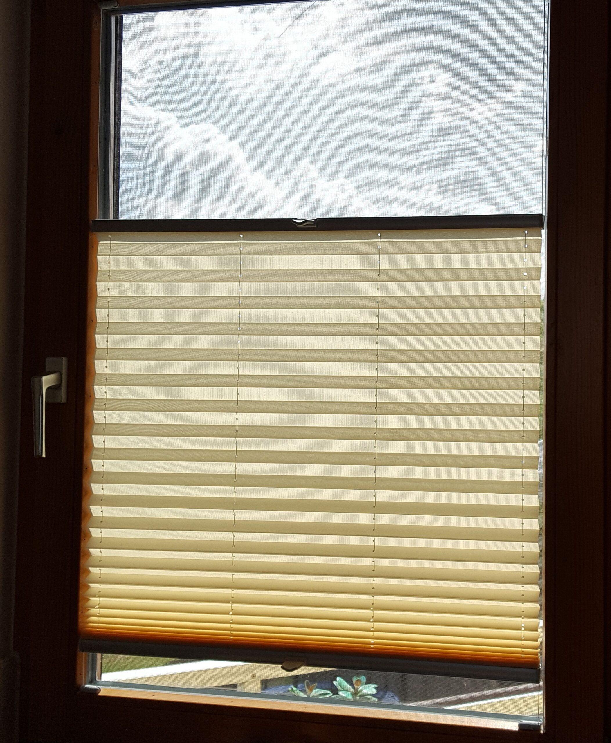 Full Size of Klemm Plissee Modelle 2020 Kinderzimmer Regal Regale Weiß Fenster Sofa Kinderzimmer Plissee Kinderzimmer