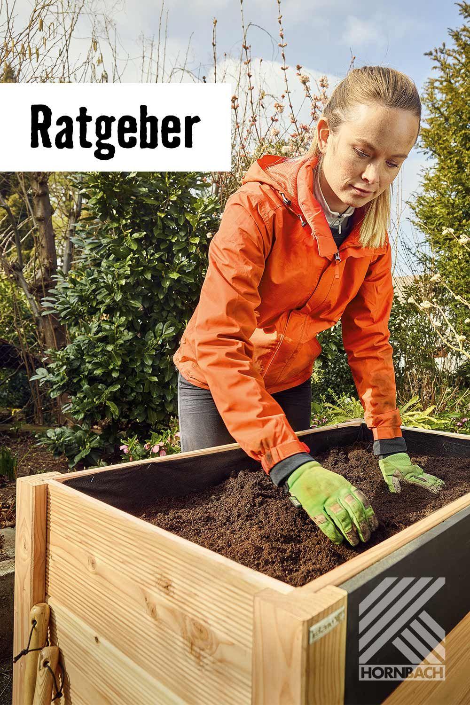Full Size of Hochbeet Hornbach Pin Auf Blumen Pflanzen Garten Wohnzimmer Hochbeet Hornbach