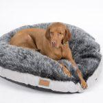 Hundebett Flocke Wolke Zooplus Bitiba 125 Xxl 120 Cm Kaufen 90 Captainfluffysnuggle Dreamer Hundehhlen Hundekissen Wohnzimmer Hundebett Flocke