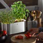 Kräutertopf Technik Zu Hause Praxistest Wmf Kruterhome Küche Wohnzimmer Kräutertopf