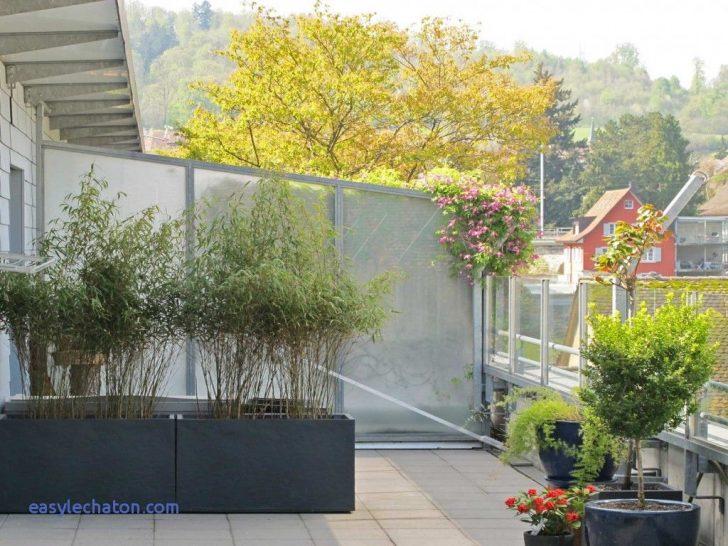 Medium Size of Sichtschutz Garten Modern Luxus 45 Fr Garden Villa Holzhaus Kind Servierwagen Essgruppe Ausziehtisch Liegestuhl Kinderhaus Whirlpool Küche Weiss Wohnzimmer Sichtschutz Garten Modern