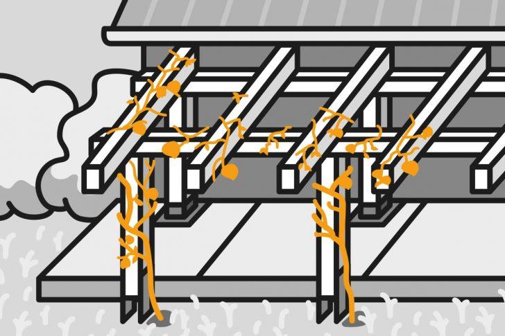 Medium Size of Pergola Bauen Anleitung Von Hornbach Dusche Einbauen Fenster Rolladen Nachträglich Küche Velux Kopfteil Bett Selber 140x200 180x200 Pool Im Garten Wohnzimmer Pergola Bauen