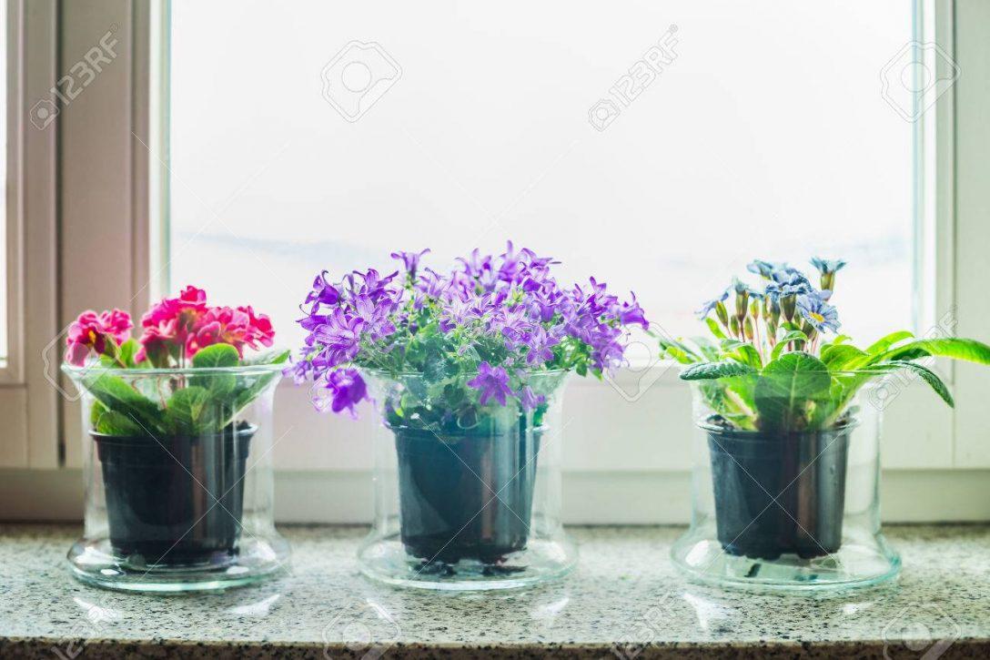 Large Size of Fensterbank Schne Mit Gras Blumen Tpfe Auf Wohnzimmer Fensterbank Dekorieren
