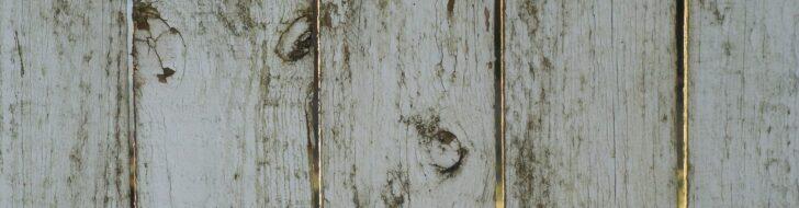 Medium Size of Paletten Bett 140x200 Bauen Palettenbett Obi Anleitung 180x200 Selber Küche Dusche Einbauen Einbauküche Regale Boxspring Bodengleiche Kopfteil Nachträglich Wohnzimmer Palettenbett Bauen