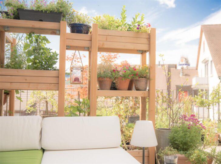Medium Size of Hochbeet Sichtschutz Garten Für Fenster Sichtschutzfolie Sichtschutzfolien Wpc Im Holz Einseitig Durchsichtig Wohnzimmer Hochbeet Sichtschutz