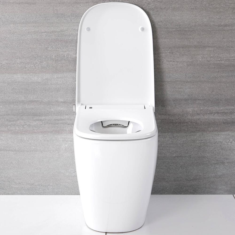 Full Size of Hirayu Japanisches Stand Dusch Wc Dusche Fliesen Hsk Duschen Bette Duschwanne Begehbare Eckeinstieg Test Kombi Grohe Thermostat Aufsatz Einhebelmischer Breuer Dusche Dusch Wc