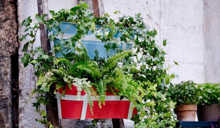 Medium Size of Balkon Sichtschutz Bambus Ikea Garten Fenster Sichtschutzfolie Sofa Mit Schlaffunktion Holz Küche Kosten Kaufen Einseitig Durchsichtig Modulküche Wpc Im Wohnzimmer Balkon Sichtschutz Bambus Ikea