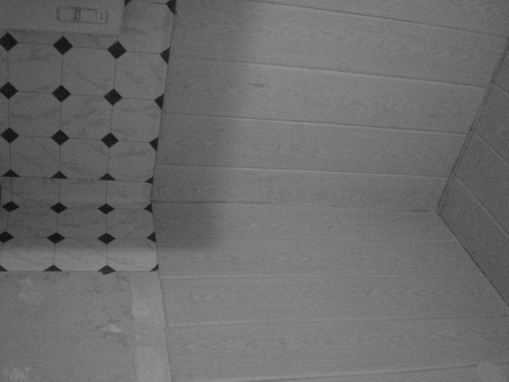 Medium Size of Abwaschbare Tapete Und Styroporpaneele Sieht Aus Wie Gefli Flickr Fototapete Schlafzimmer Wohnzimmer Tapeten Ideen Fenster Küche Modern Für Die Fototapeten Wohnzimmer Abwaschbare Tapete