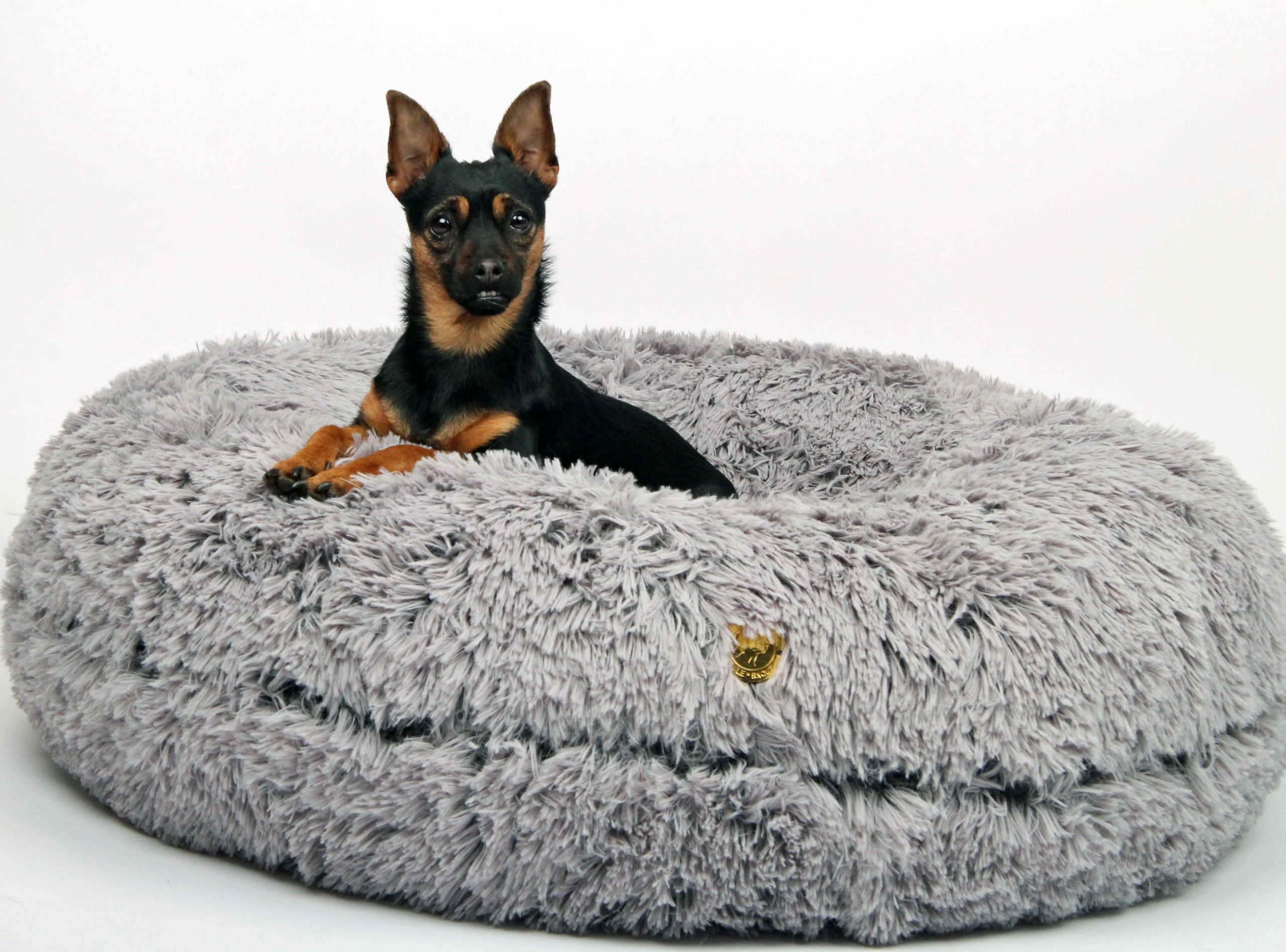Full Size of Hundebett Flocke 120 Cm Kaufen 125 Zooplus Xxl Bitiba 90 Wolke Wohnzimmer Hundebett Flocke
