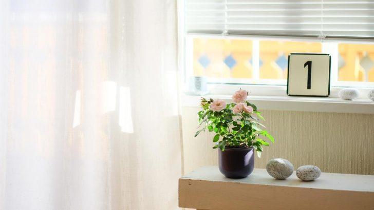 Medium Size of Sichtschutz Fenster Innen Ideen Vor Neugierigen Blicken Schtzen So Gehts Aron Jalousie Einbruchsicherung Einbruchschutz Nachrüsten Felux Günstige Folie Holz Wohnzimmer Sichtschutz Fenster Innen Ideen