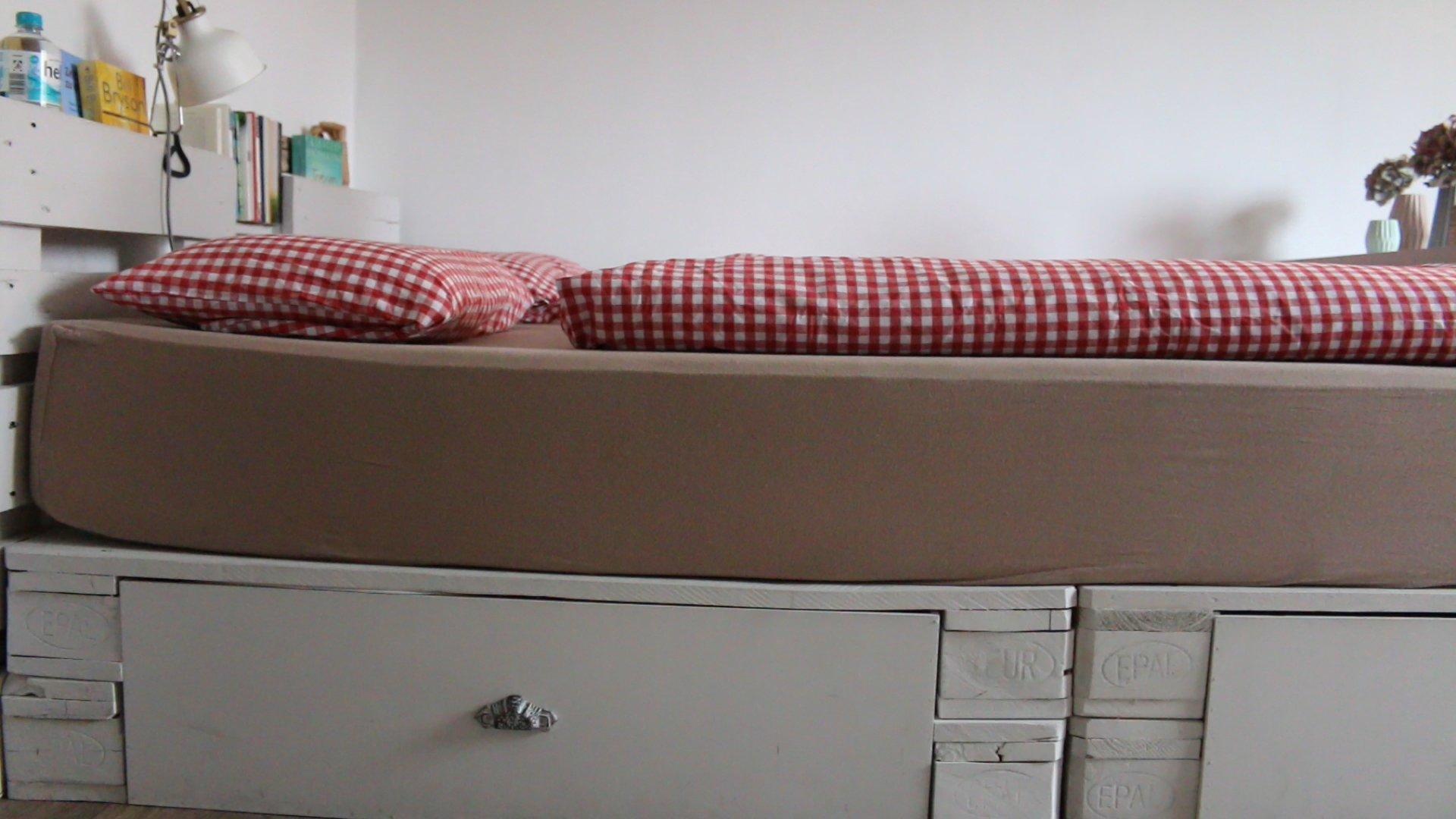 Full Size of Palettenbett Bauen Selber Kaufen Europaletten Betten Fenster Einbauen Einbauküche Neue Küche Regale Velux Bodengleiche Dusche Nachträglich Kosten Rolladen Wohnzimmer Palettenbett Bauen