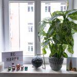 Dekoration Fensterbank Pflanzen 2 Josie Loves Wohnzimmer Fensterbank Dekorieren