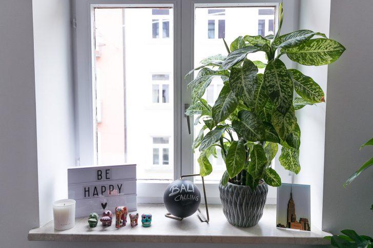 Medium Size of Dekoration Fensterbank Pflanzen 2 Josie Loves Wohnzimmer Fensterbank Dekorieren