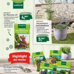 Aldi Sd Prospekte Marken Aktion Der Woche Seite No 15 36 Relaxsessel Garten Hochbeet Wohnzimmer Hochbeet Aldi
