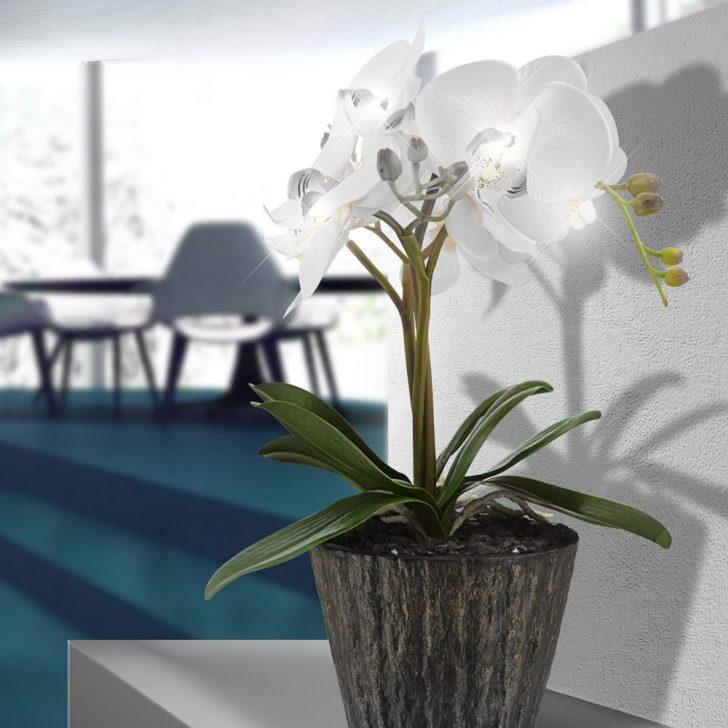 Medium Size of Fensterbank Dekorieren Led Deko Lampe Orchidee Blumen Topf Tisch Leuchte Wei Wohnzimmer Fensterbank Dekorieren