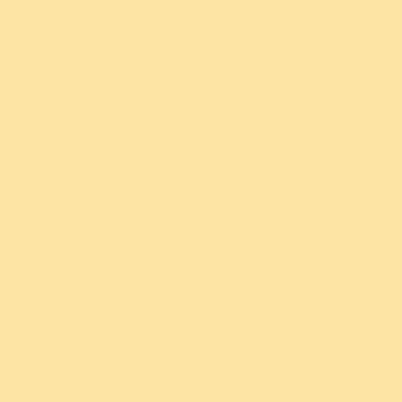 Full Size of Magnolia Farbe Obi Design Color Magnolie Matt 1 L Kaufen Bei Wohnzimmer Magnolia Farbe