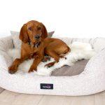 Hundebett Flocke Zooplus Kaufen 120 Cm Bitiba 125 90 Xxl Wohnzimmer Hundebett Flocke