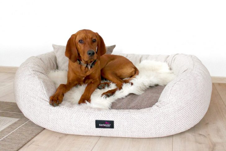 Medium Size of Hundebett Flocke Zooplus Kaufen 120 Cm Bitiba 125 90 Xxl Wohnzimmer Hundebett Flocke