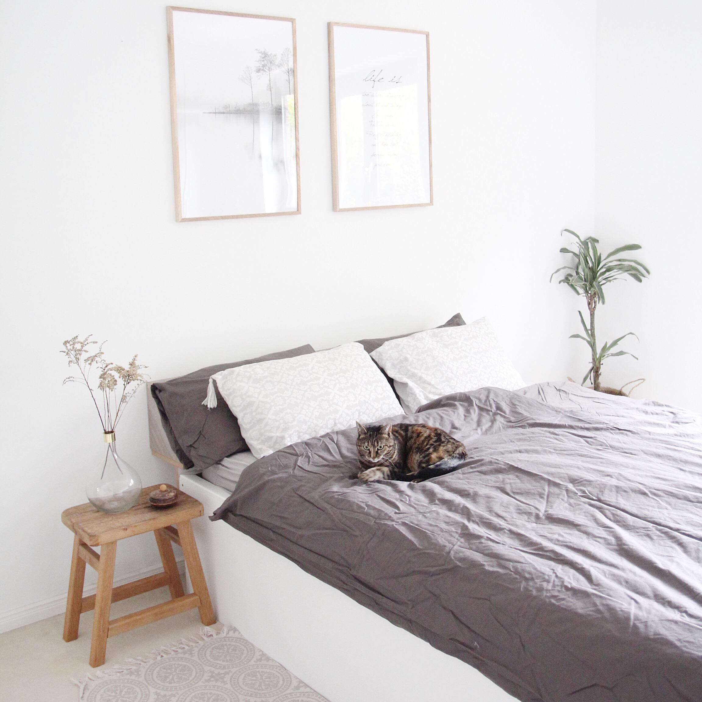 Full Size of Schlafzimmer Dekorieren Design Dots Vorhänge Wandtattoo Landhaus Set Weiß Komplett Massivholz Mit Lattenrost Und Matratze Günstig überbau Deckenleuchten Wohnzimmer Schlafzimmer Dekorieren