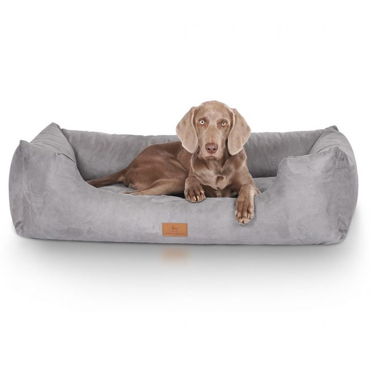 Medium Size of Knuffelwuff Hundebett Dreamline Bertis Hundeshop Wohnzimmer Hundebett Flocke