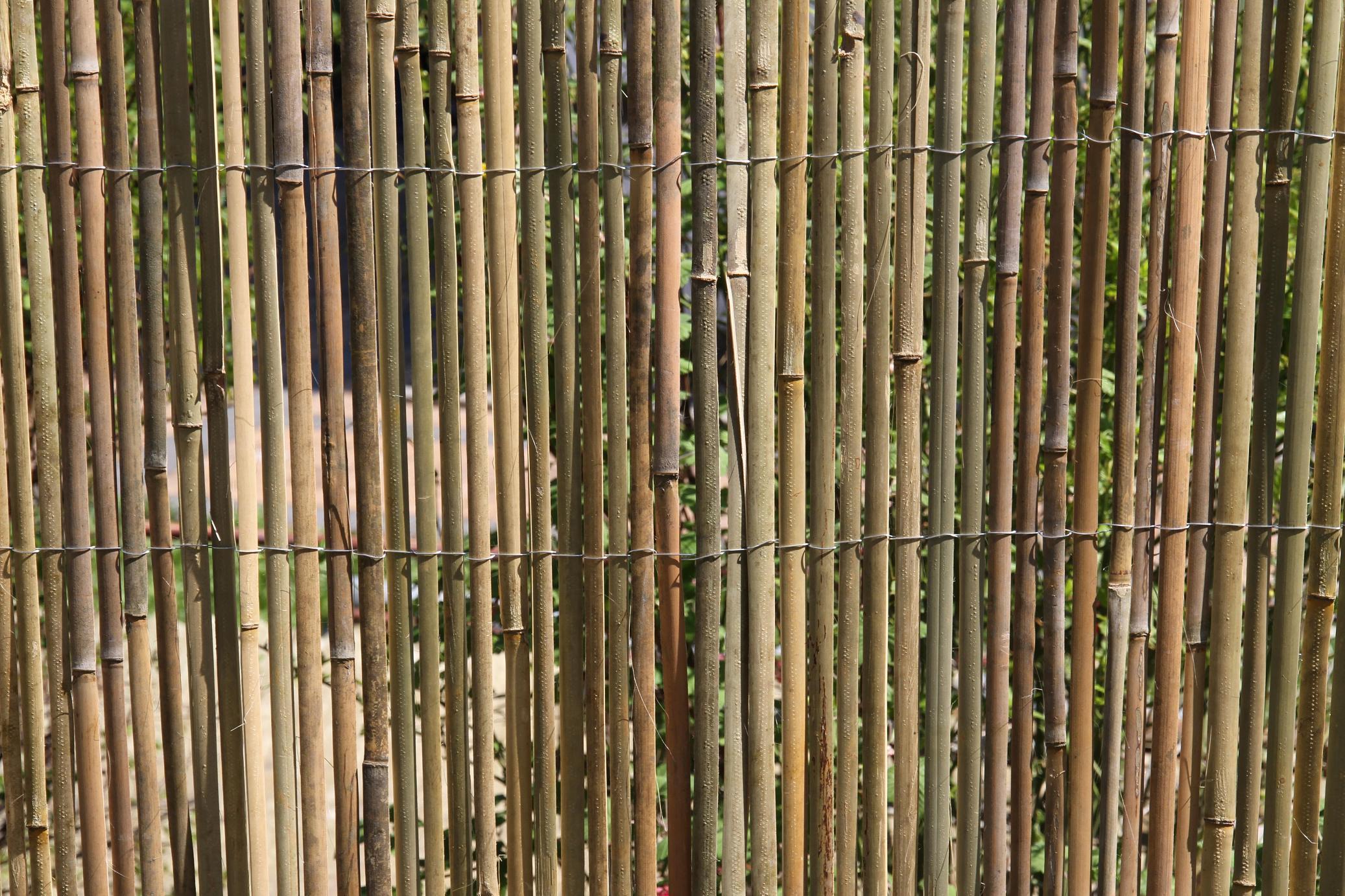 Full Size of Balkon Sichtschutz Bambus Ikea Bambusmatte Sichtschutzzaun Zaun Gartenzaun 1 Miniküche Bett Garten Sofa Mit Schlaffunktion Betten Bei Fenster Küche Kaufen Wohnzimmer Balkon Sichtschutz Bambus Ikea