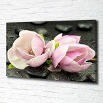 Fototapete Blumen 3d Komar Blumenwiese Rosa Vlies Aquarell Schlafzimmer Vintage Rosen Fototapeten Kaufen Dunkel Bunte Weiss Magnolien Luxus Design Perlen Wohnzimmer Fototapete Blumen