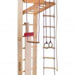 Rinagym Kletterwand Fr Indoor Klettergerst Aus Holz Klettergerüst Garten Wohnzimmer Klettergerüst Indoor