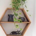 Regal Selber Bauen Wohnzimmer Sechseckiges Regal Selber Bauen Green Bird Diy Mode Bodengleiche Dusche Einbauen Schreibtisch Großes Hochglanz Weiß Dachschräge Dvd Graues Nach Maß